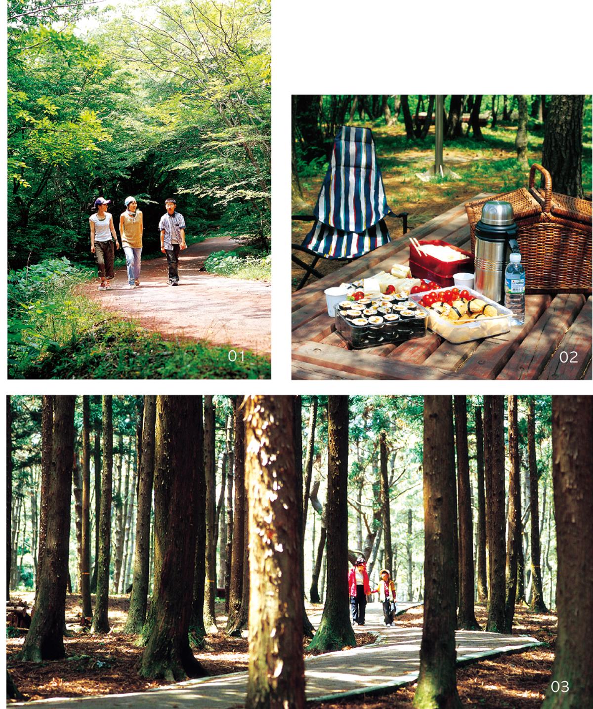 교래자연휴양림2