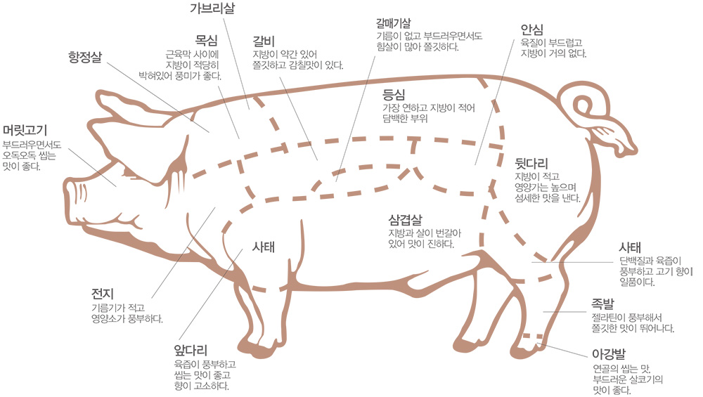 돼지고기 부위별